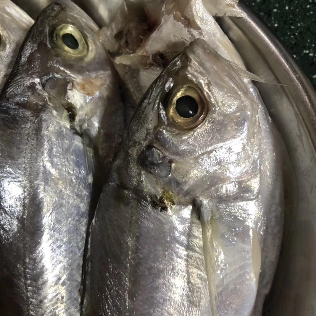 咸鲜加银鱼 海鲜怎样煮才好吃?